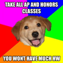 take all Ap and honors classes