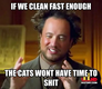 if we clean fast enough